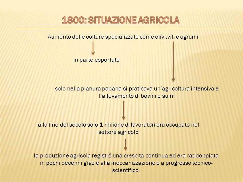 Aumento delle colture specializzate come olivi,viti e agrumi