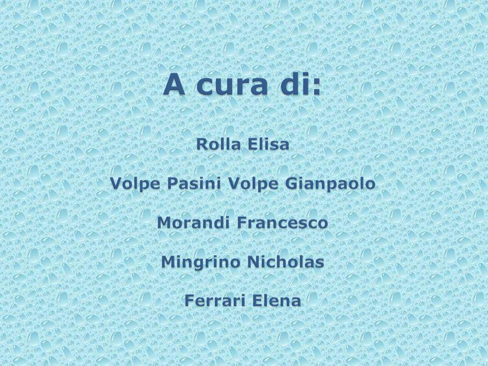 A cura di: Rolla Elisa Volpe Pasini Volpe Gianpaolo Morandi Francesco Mingrino Nicholas Ferrari Elena