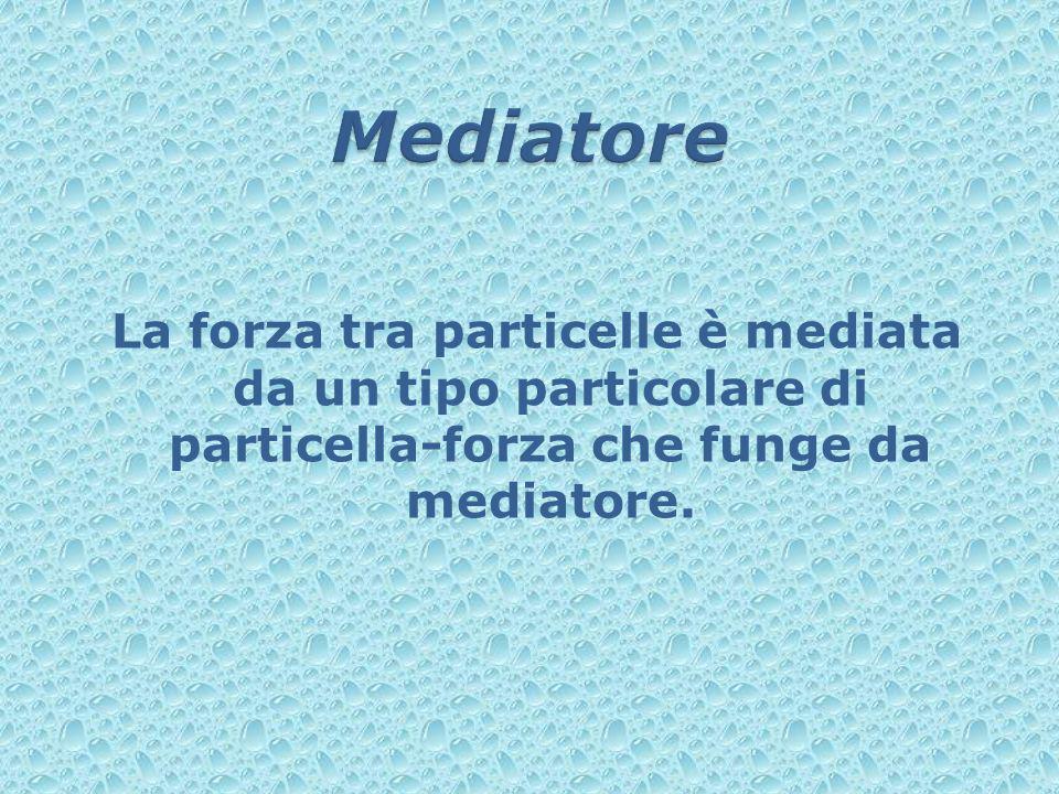 Mediatore La forza tra particelle è mediata da un tipo particolare di particella-forza che funge da mediatore.