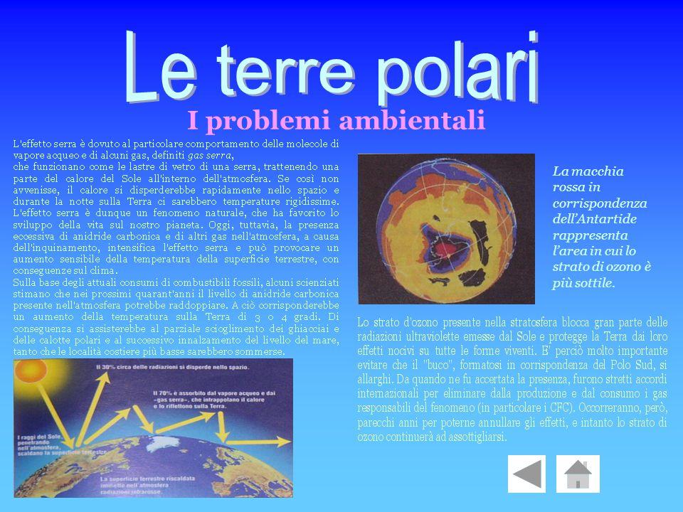 Le terre polari I problemi ambientali