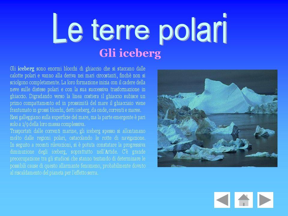 Le terre polari Gli iceberg