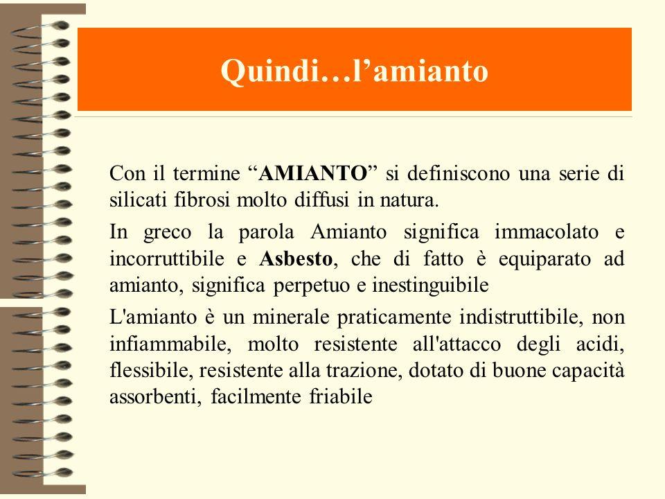 Quindi…l'amianto Con il termine AMIANTO si definiscono una serie di silicati fibrosi molto diffusi in natura.