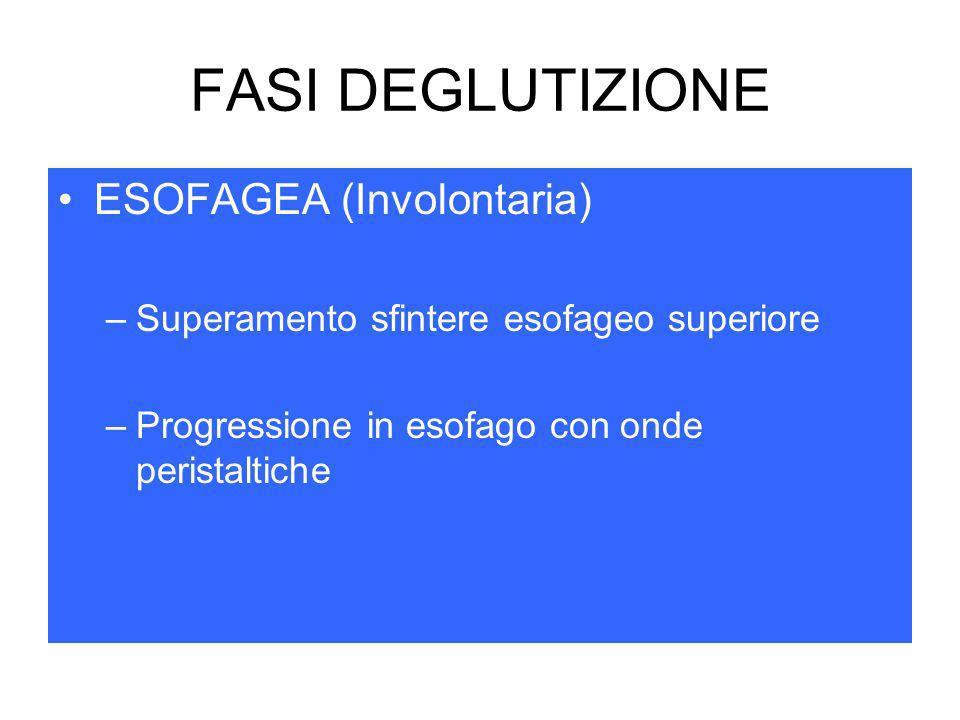 FASI DEGLUTIZIONE ESOFAGEA (Involontaria)