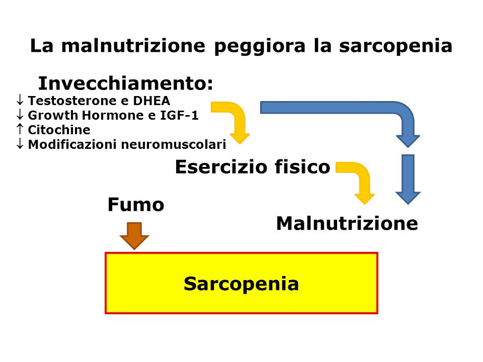 La malnutrizione peggiora la sarcopenia