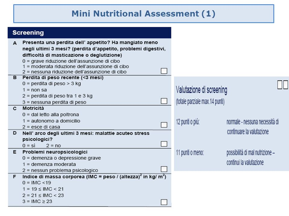 Mini Nutritional Assessment (1)