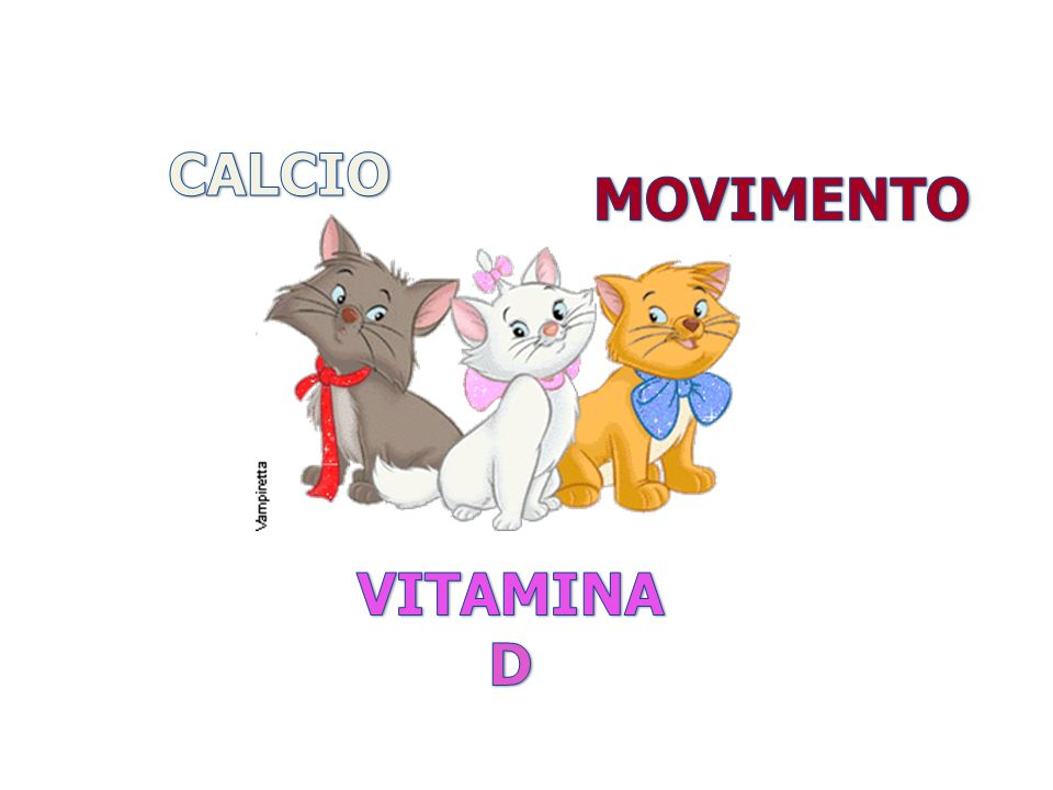 CALCIO MOVIMENTO VITAMINA D