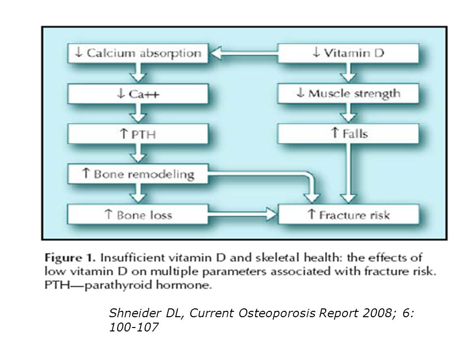 Shneider DL, Current Osteoporosis Report 2008; 6: 100-107