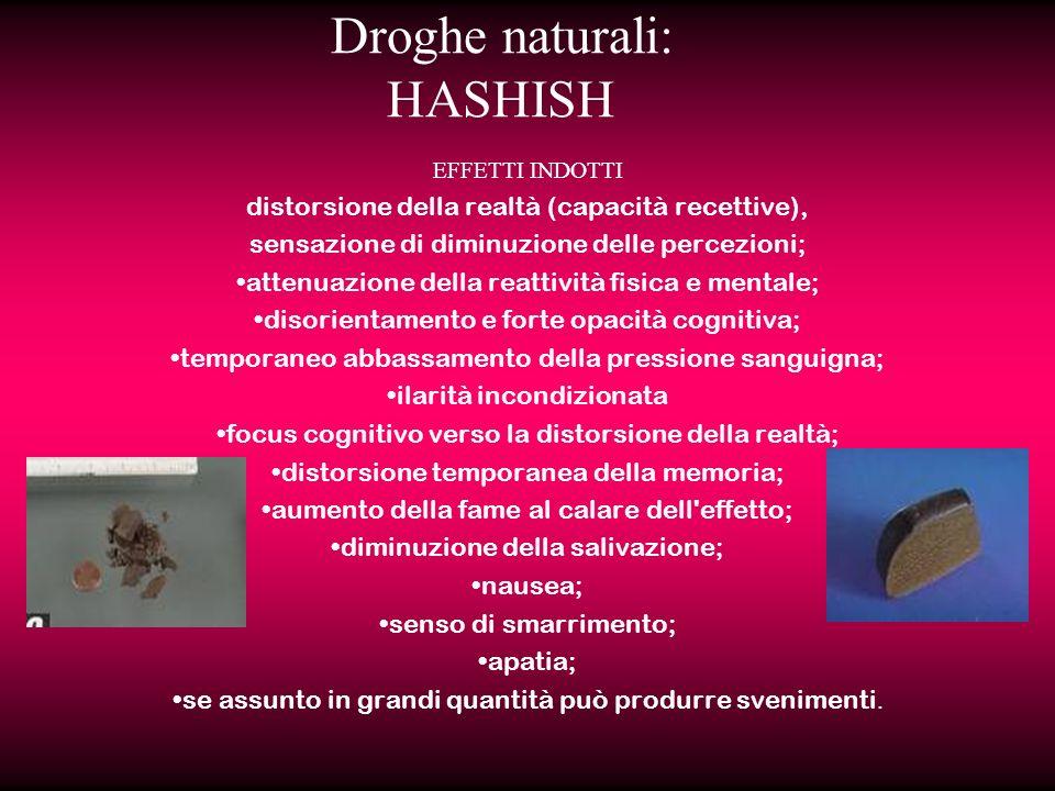 Droghe naturali: HASHISH