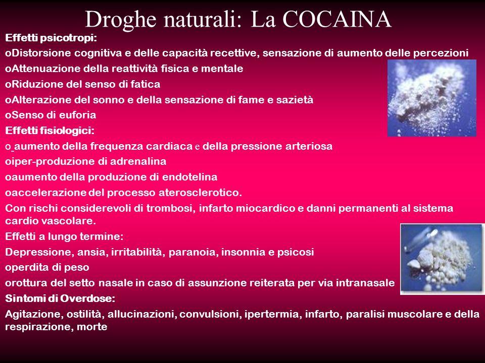 Droghe naturali: La COCAINA