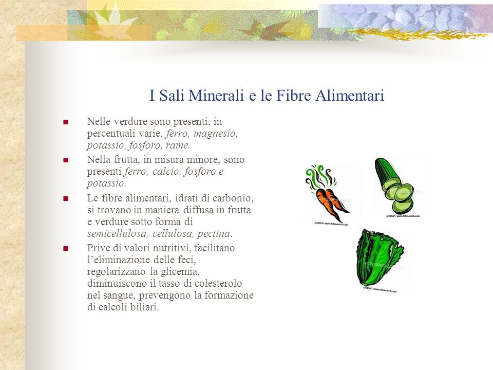 I Sali Minerali e le Fibre Alimentari