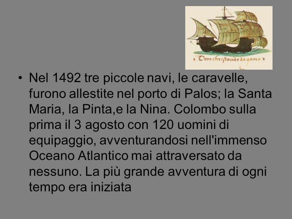 Nel 1492 tre piccole navi, le caravelle, furono allestite nel porto di Palos; la Santa Maria, la Pinta,e la Nina.