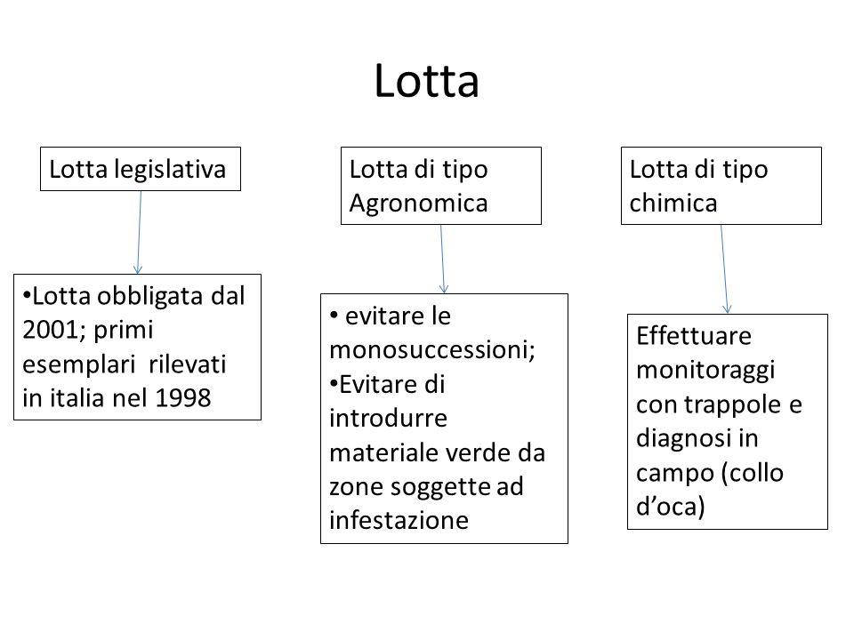 Lotta Lotta legislativa Lotta di tipo Agronomica Lotta di tipo chimica
