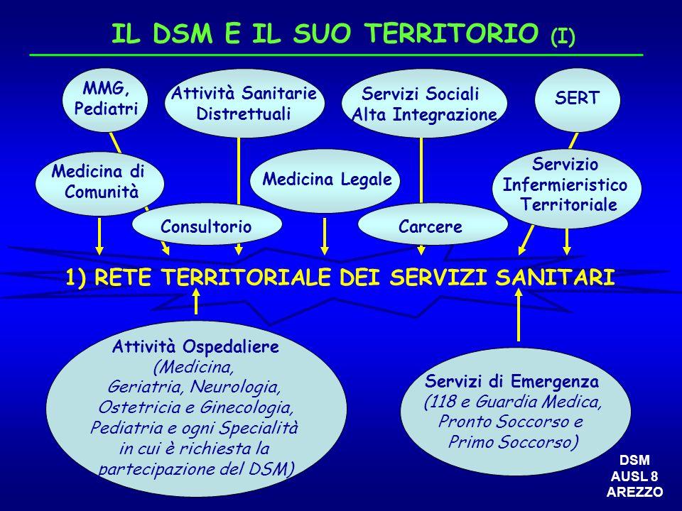 IL DSM E IL SUO TERRITORIO (I)