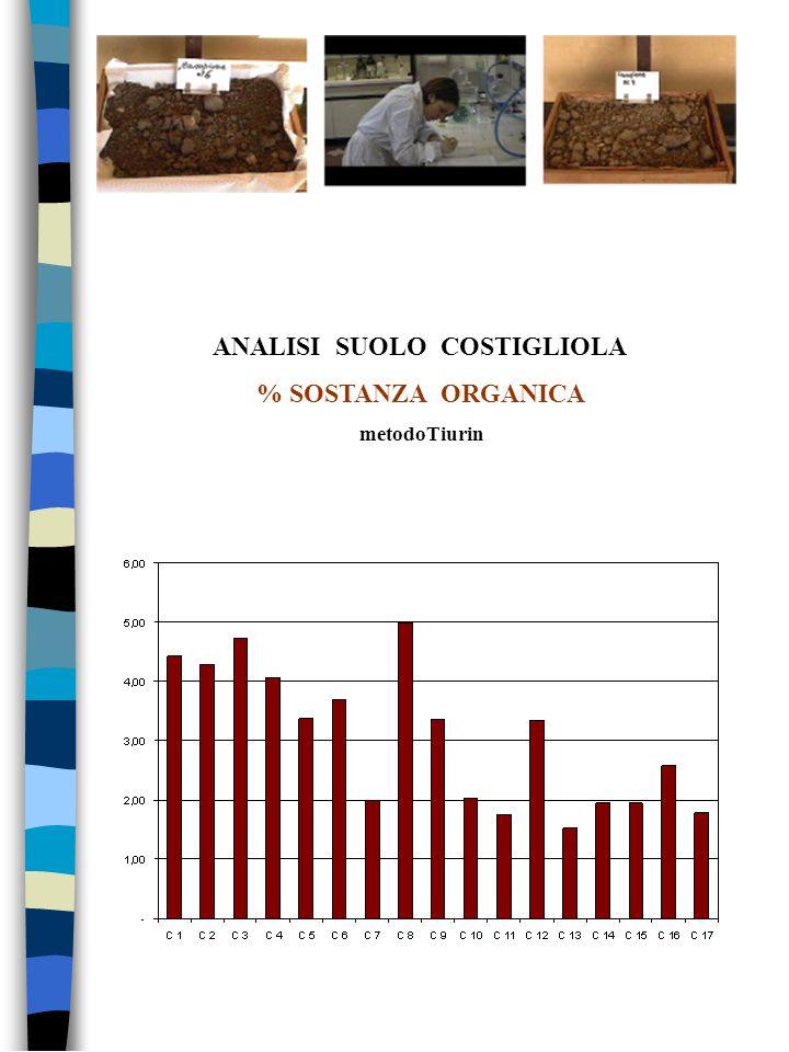 ANALISI SUOLO COSTIGLIOLA % SOSTANZA ORGANICA