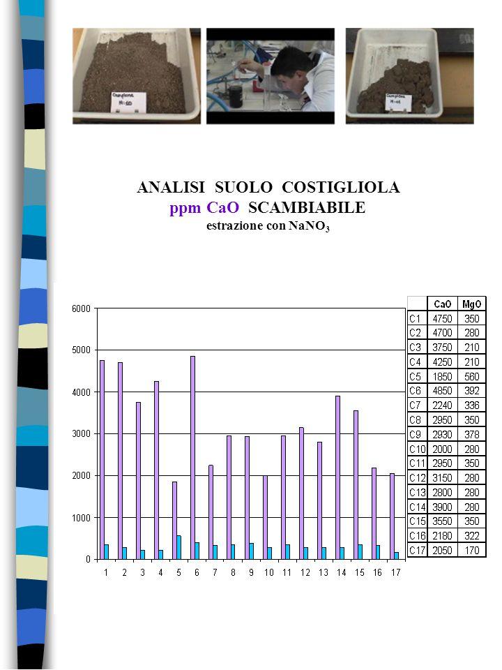 ANALISI SUOLO COSTIGLIOLA ppm CaO SCAMBIABILE estrazione con NaNO3