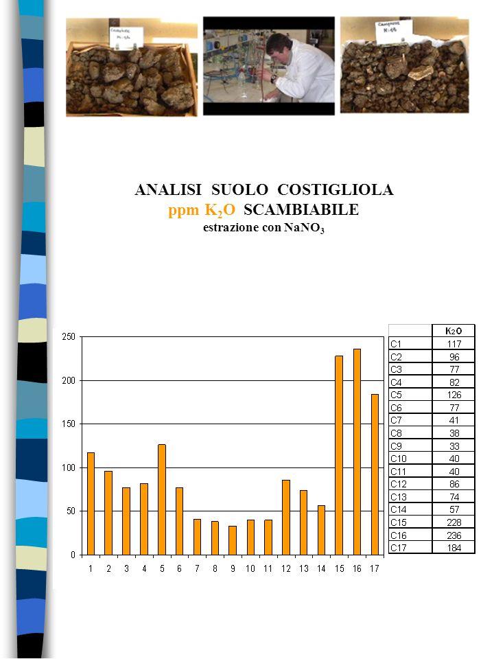 ANALISI SUOLO COSTIGLIOLA ppm K2O SCAMBIABILE estrazione con NaNO3