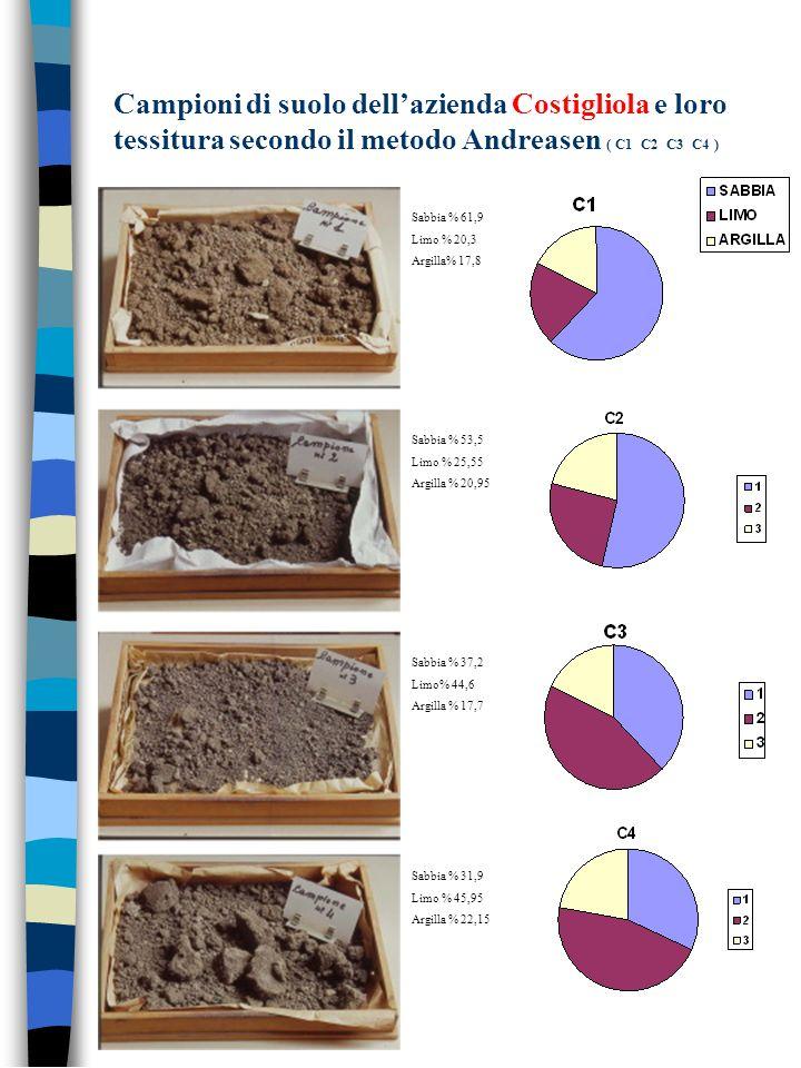 Campioni di suolo dell'azienda Costigliola e loro tessitura secondo il metodo Andreasen ( C1 C2 C3 C4 )