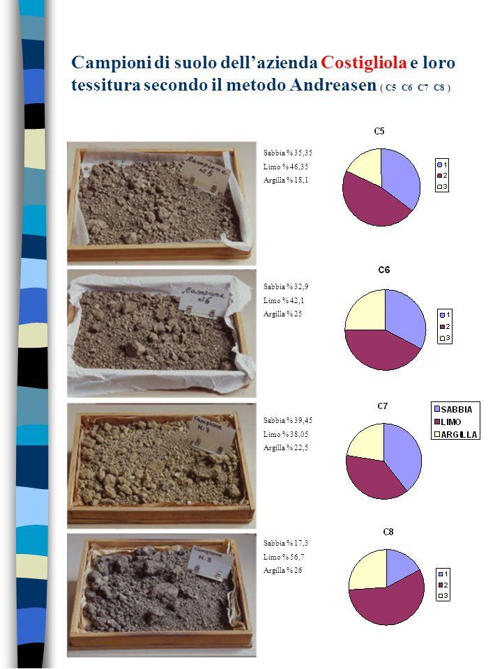 Campioni di suolo dell'azienda Costigliola e loro tessitura secondo il metodo Andreasen ( C5 C6 C7 C8 )