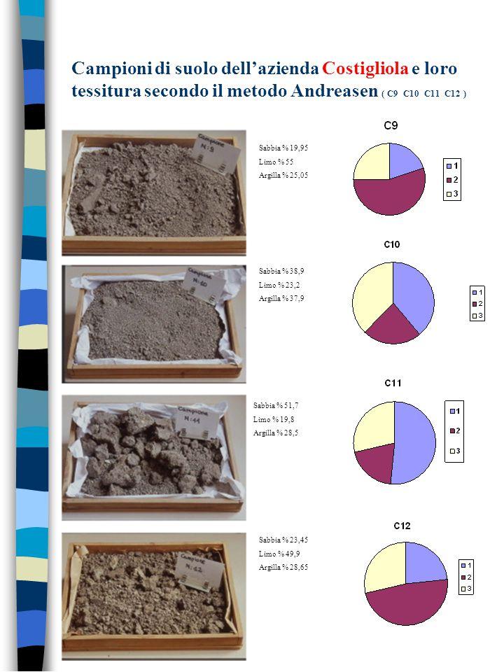 Campioni di suolo dell'azienda Costigliola e loro tessitura secondo il metodo Andreasen ( C9 C10 C11 C12 )