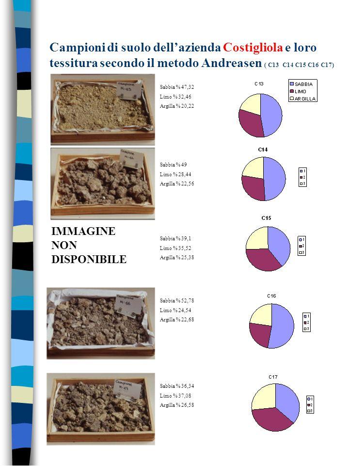 Campioni di suolo dell'azienda Costigliola e loro tessitura secondo il metodo Andreasen ( C13 C14 C15 C16 C17)