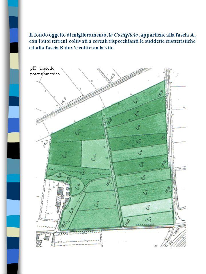 Il fondo oggetto di miglioramento, la Costigliola ,appartiene alla fascia A, con i suoi terreni coltivati a cereali rispecchianti le suddette cratteristiche ed alla fascia B dov'è coltivata la vite.