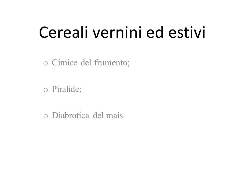 Cereali vernini ed estivi