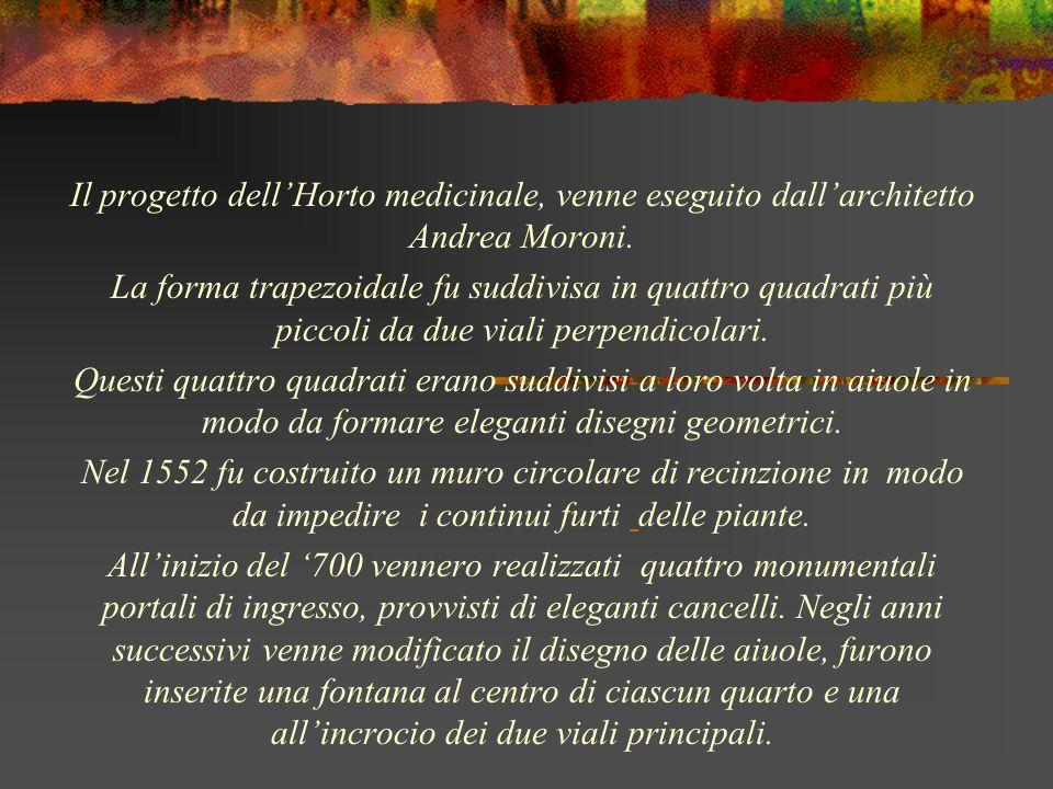 Il progetto dell'Horto medicinale, venne eseguito dall'architetto Andrea Moroni.