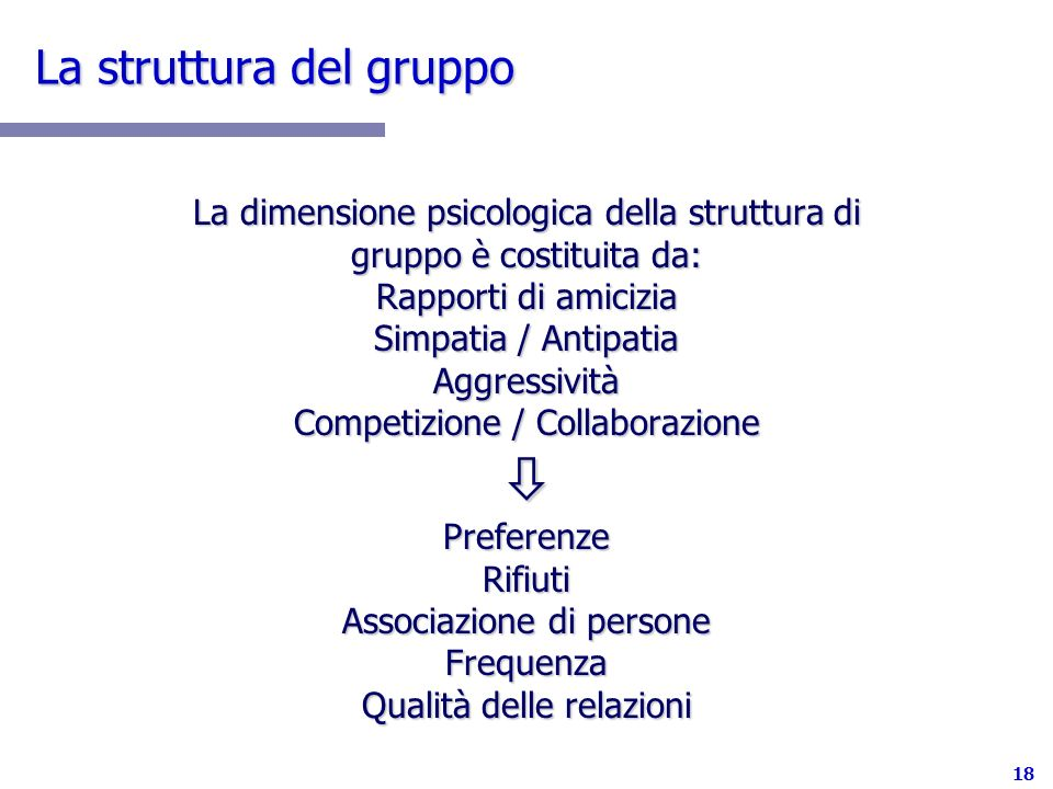 La struttura del gruppo