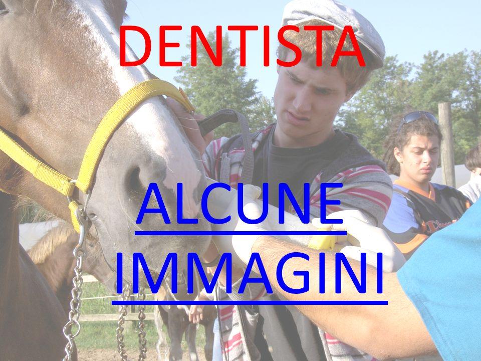 DENTISTA ALCUNE IMMAGINI