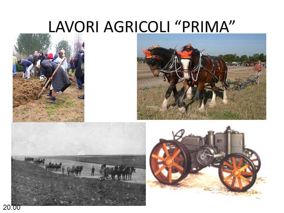 LAVORI AGRICOLI PRIMA