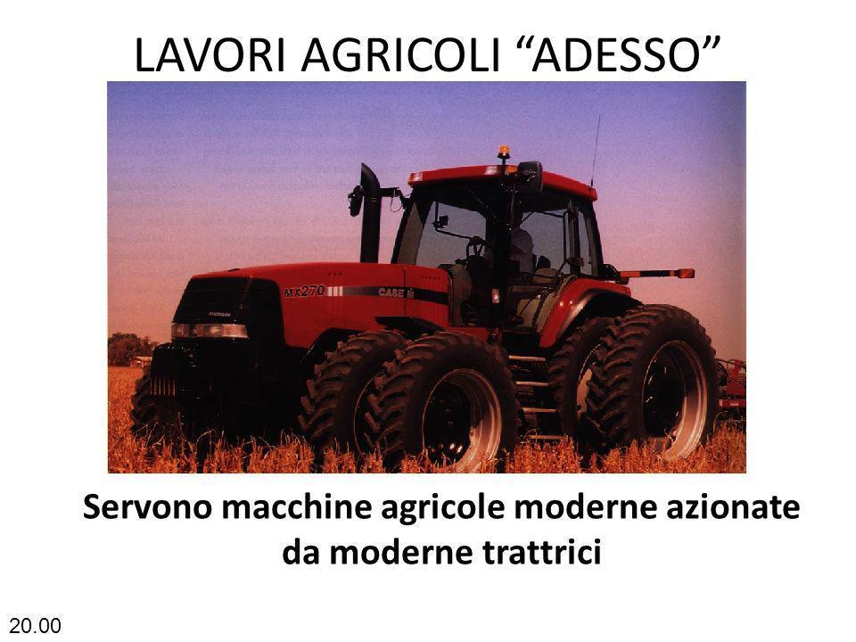 LAVORI AGRICOLI ADESSO