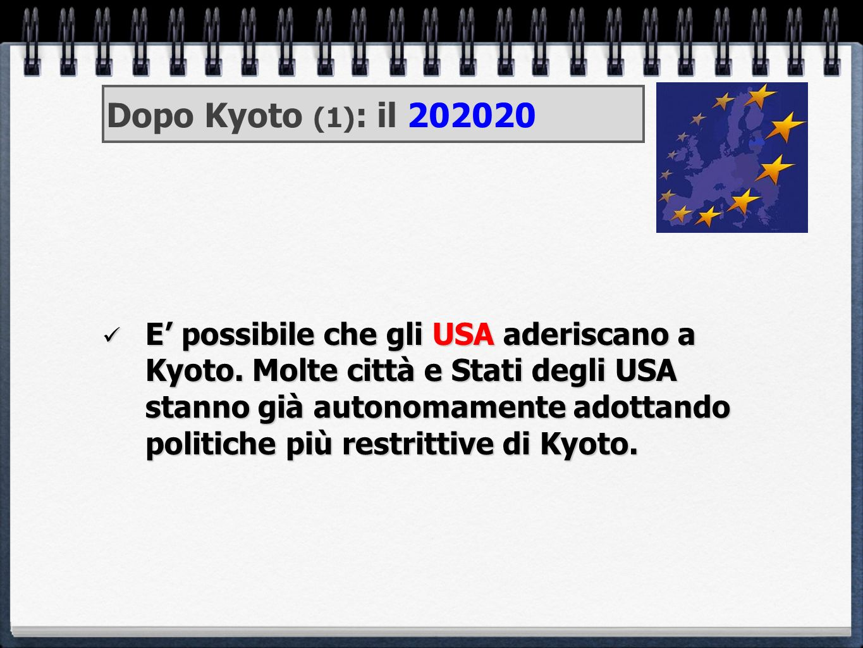 Dopo Kyoto (1): il 202020