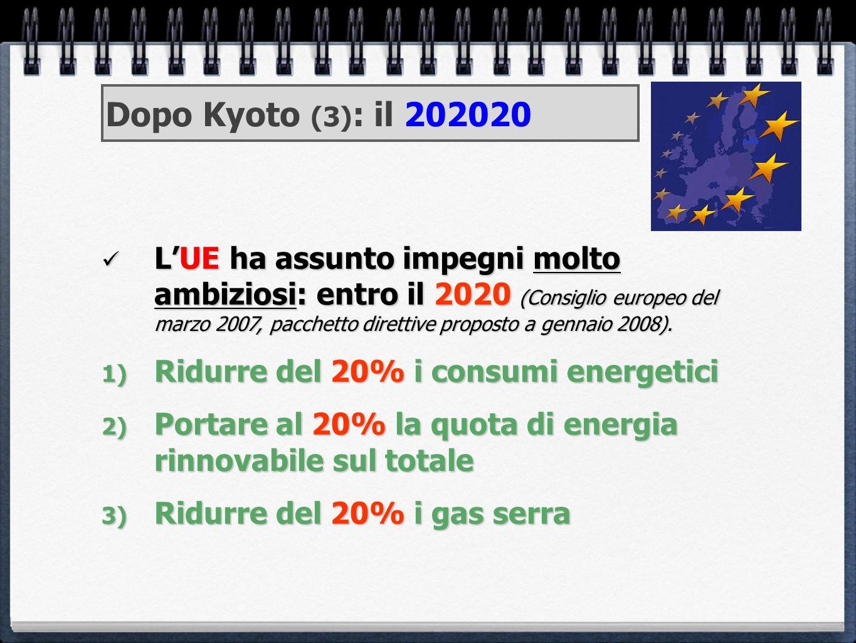 Dopo Kyoto (3): il 202020