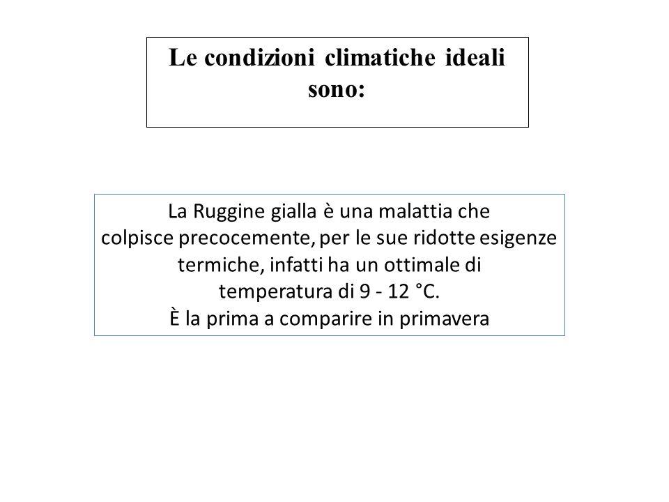 Le condizioni climatiche ideali sono:
