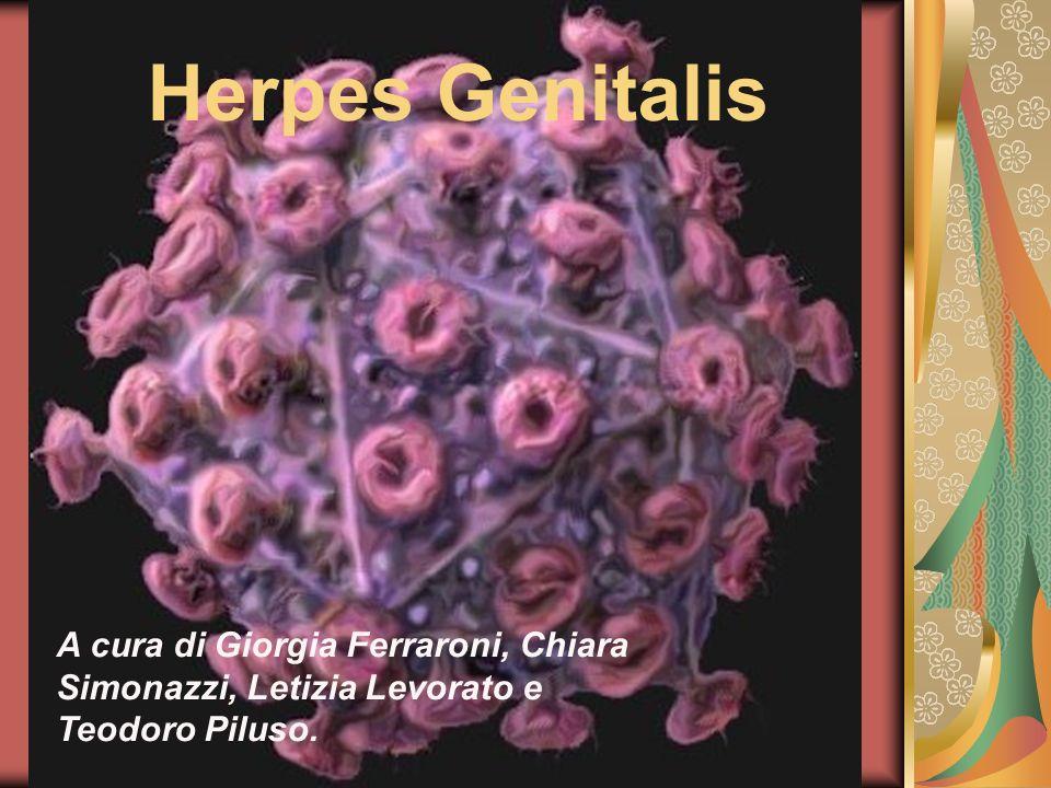 Herpes Genitalis Che cosa è.