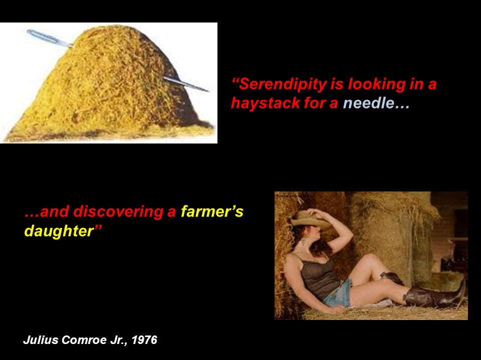 Serendipity is looking in a haystack for a needle…
