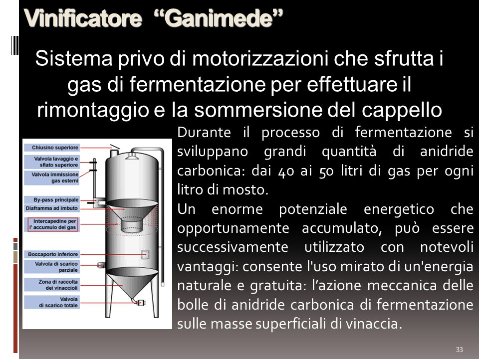 Vinificatore Ganimede