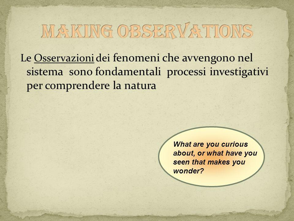 Making Observations Le Osservazioni dei fenomeni che avvengono nel sistema sono fondamentali processi investigativi per comprendere la natura.