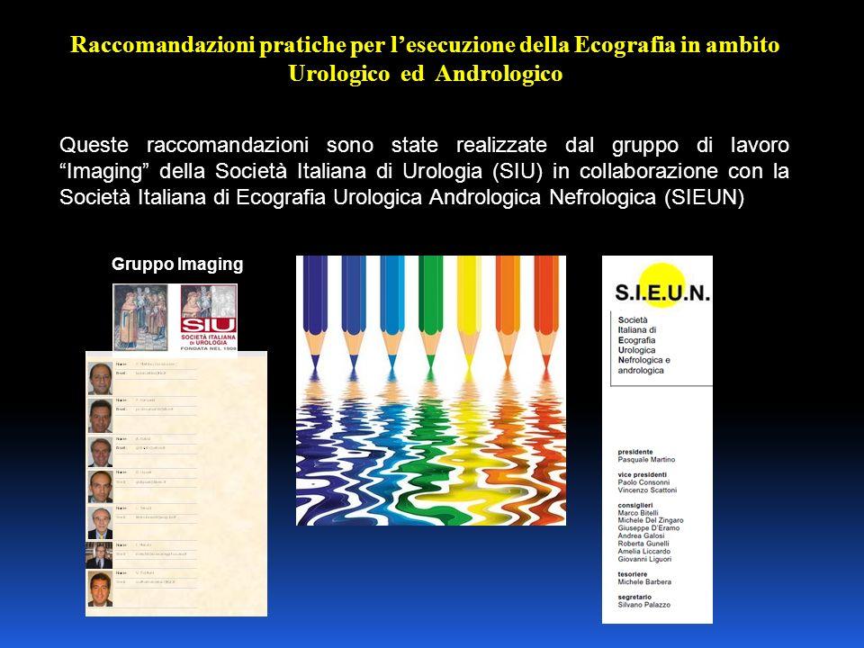 Raccomandazioni pratiche per l'esecuzione della Ecografia in ambito Urologico ed Andrologico