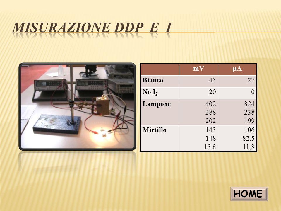 misurazione DDP e i HOME mV µA Bianco 45 27 No I2 20 Lampone 402 288