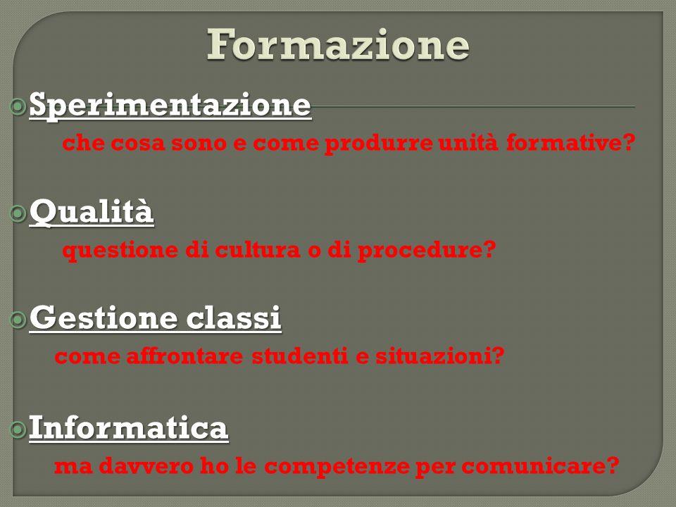 Formazione Sperimentazione Qualità Gestione classi Informatica