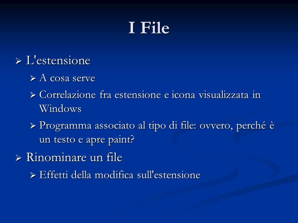 I File L estensione Rinominare un file A cosa serve