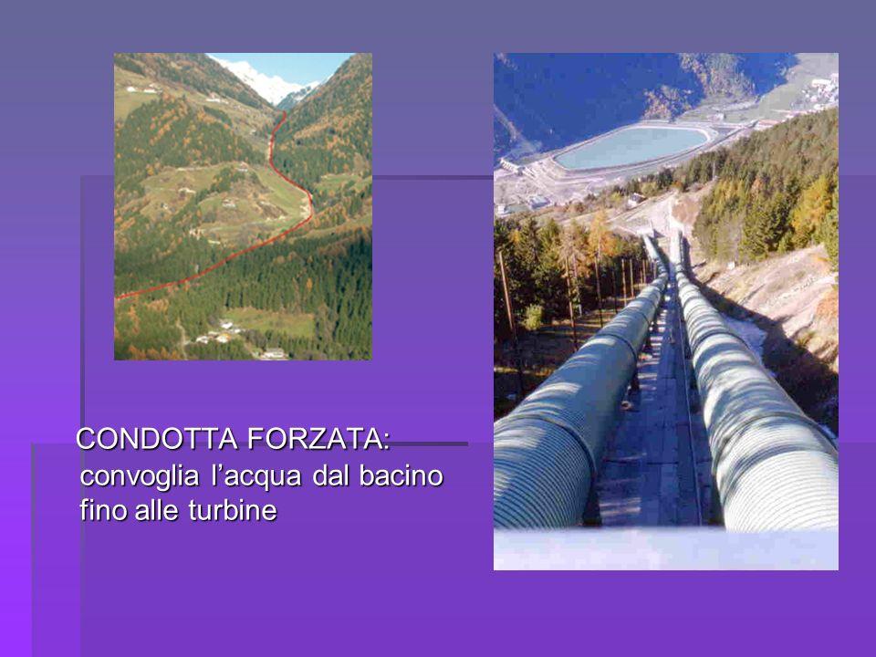 CONDOTTA FORZATA: convoglia l'acqua dal bacino fino alle turbine