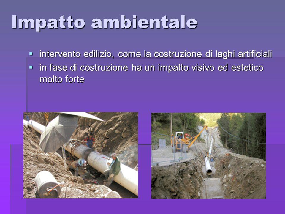Impatto ambientale intervento edilizio, come la costruzione di laghi artificiali.