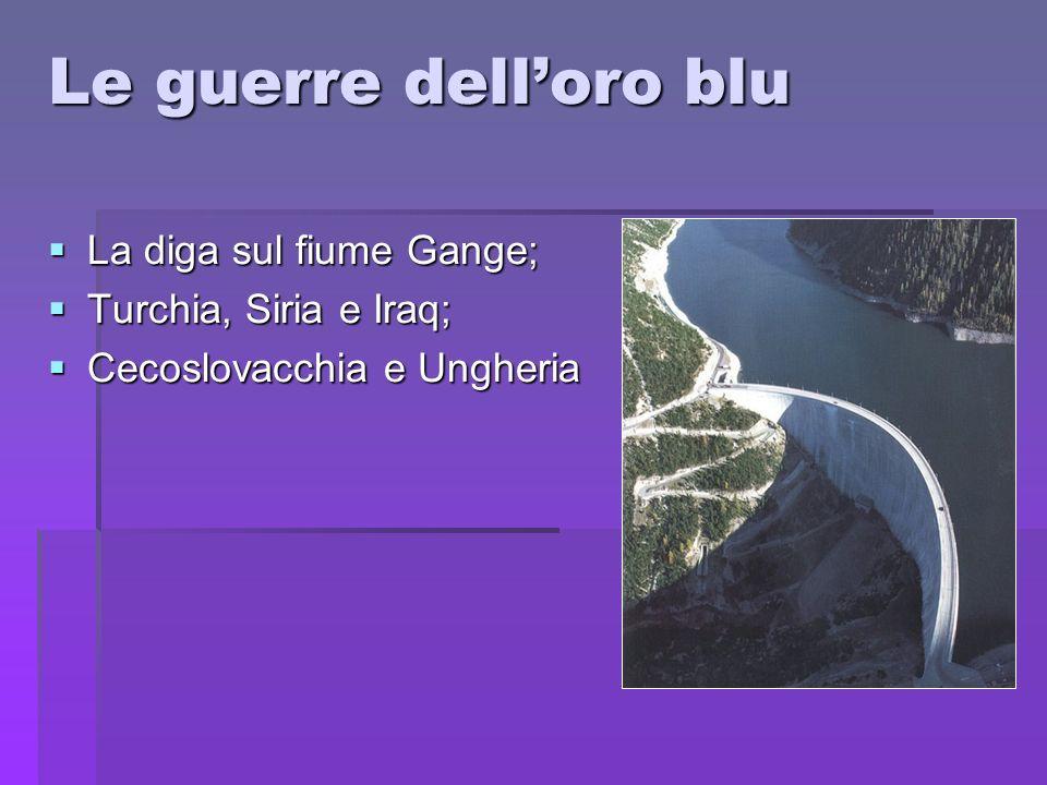 Le guerre dell'oro blu La diga sul fiume Gange; Turchia, Siria e Iraq;