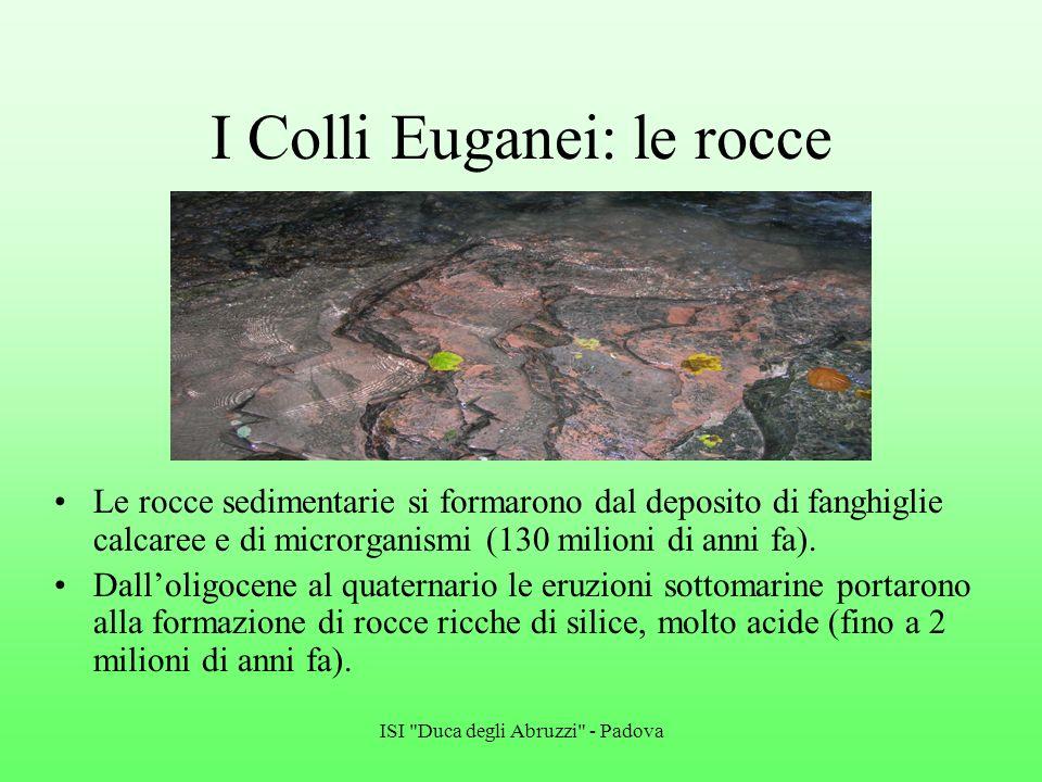 I Colli Euganei: le rocce