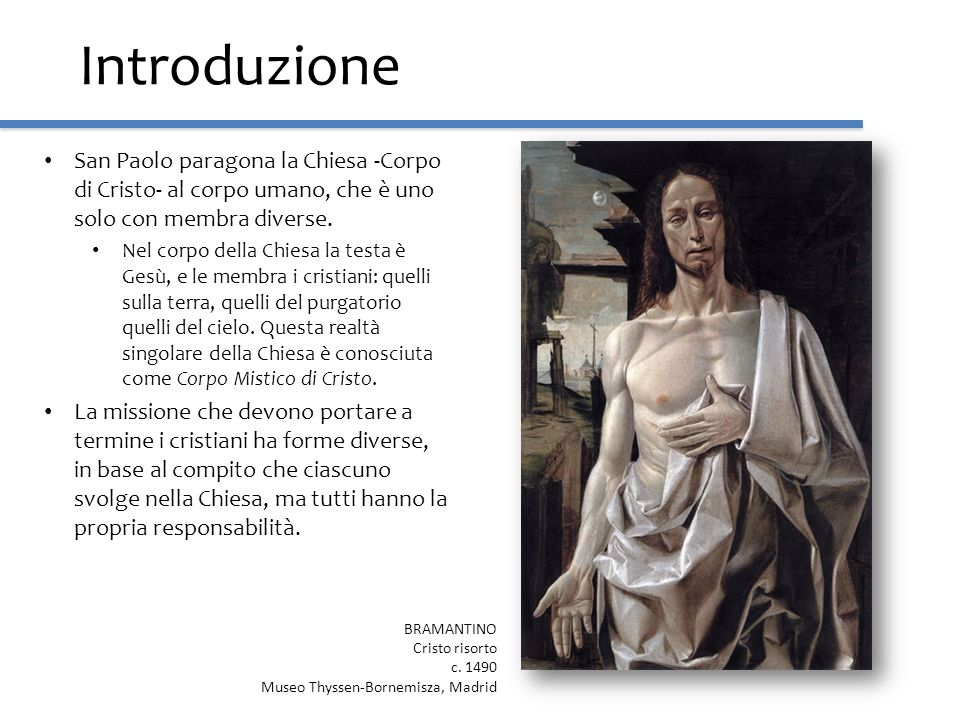 Introduzione San Paolo paragona la Chiesa -Corpo di Cristo- al corpo umano, che è uno solo con membra diverse.