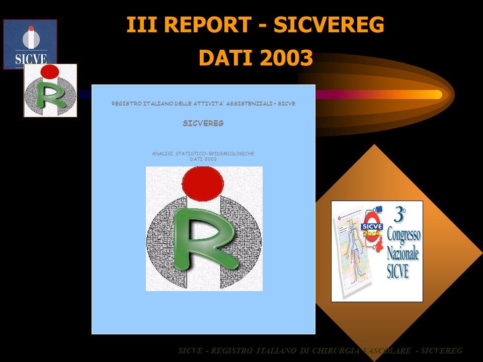 III REPORT - SICVEREG DATI 2003
