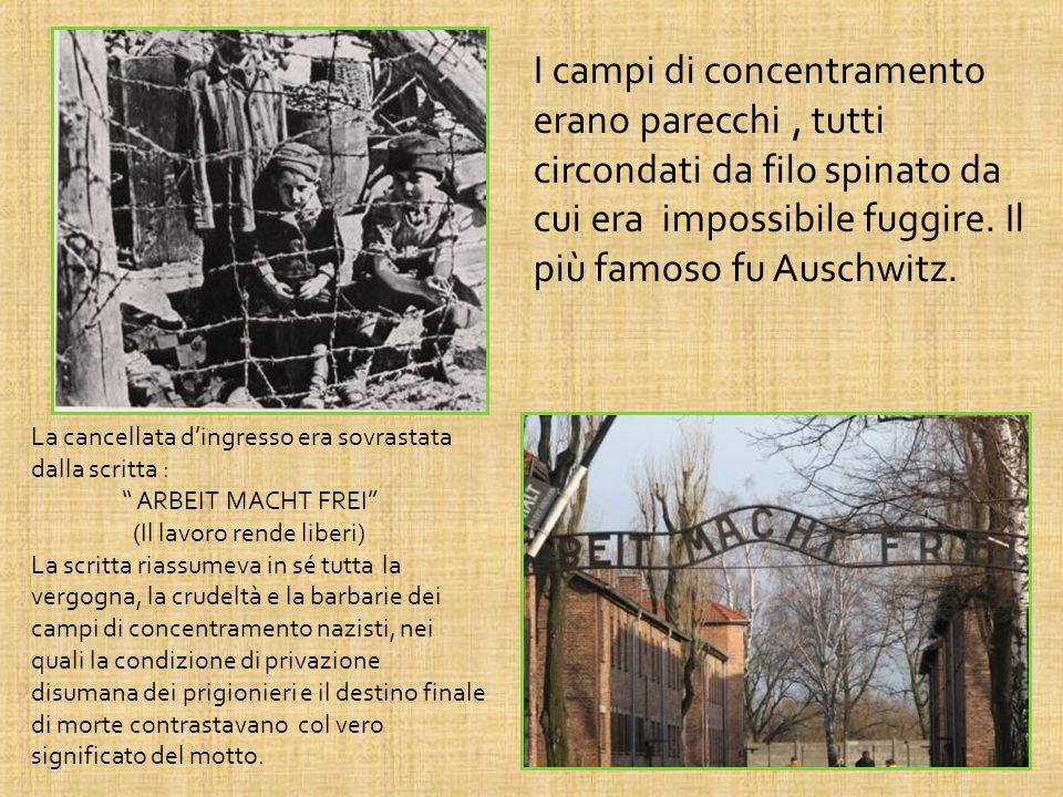 I campi di concentramento erano parecchi , tutti circondati da filo spinato da cui era impossibile fuggire. Il più famoso fu Auschwitz.