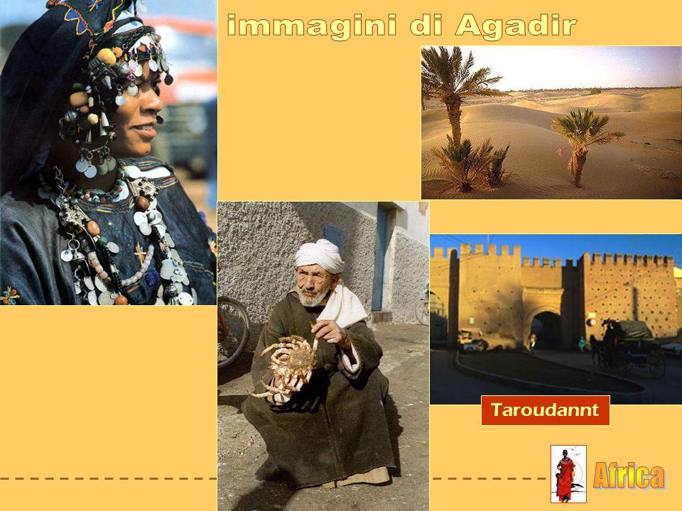 immagini di Agadir Taroudannt Africa